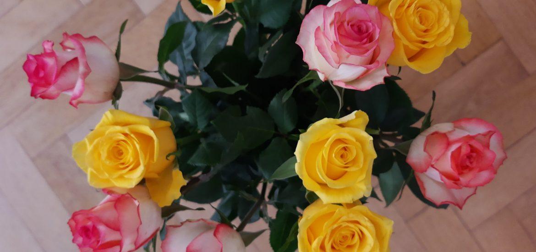 Runzelfuesschen Blumen kaufen